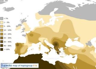 Haplogrupo E1b, típico del Norte de África, presente en la Península Ibérica a través de los bereberes, sobre todo en la parte occidental, incluida Beturia